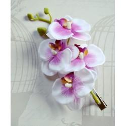 Orhideedega juukseklamber