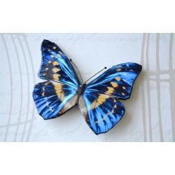 Pross sini-pruun liblikas