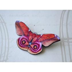 Pross puna-roosa liblikas