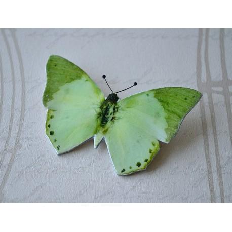Pross roheline liblikas