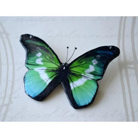 Pross sini-roheline liblikas