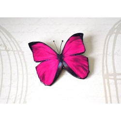 Pross tumeroosa liblikas